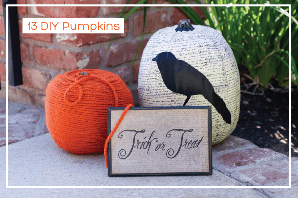 13 DIY Pumpkins yarn and bird