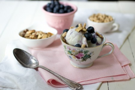 Blueberries and Yoplait ® Frozen Yogurt