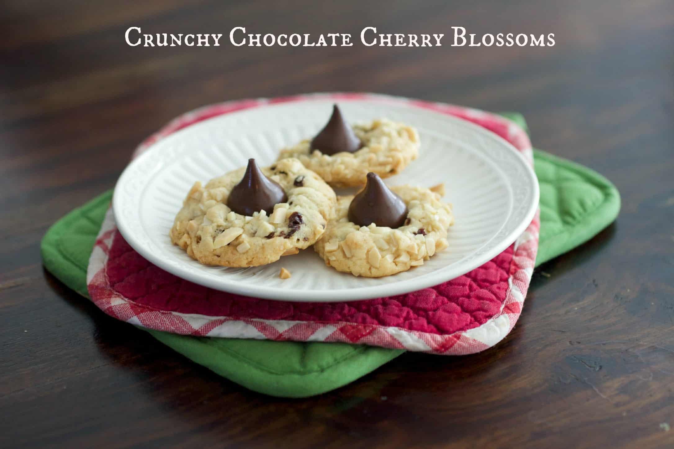 Crunchy Chocolate Cherry Blossoms