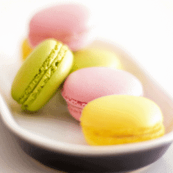 Plate of summer macarons