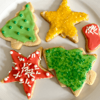 plate of colorful glutem free dairy free christmas cookies